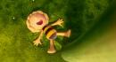 Die Biene Maja der Kinofilm · Maya the Bee Movie · Feature Film